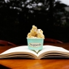 Stuppendo comemora o Dia Nacional do Livro incentivando a leitura