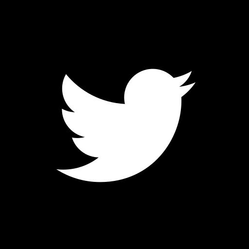 Lilica Mattos - Assessoria de Imprensa | Icone Twitter